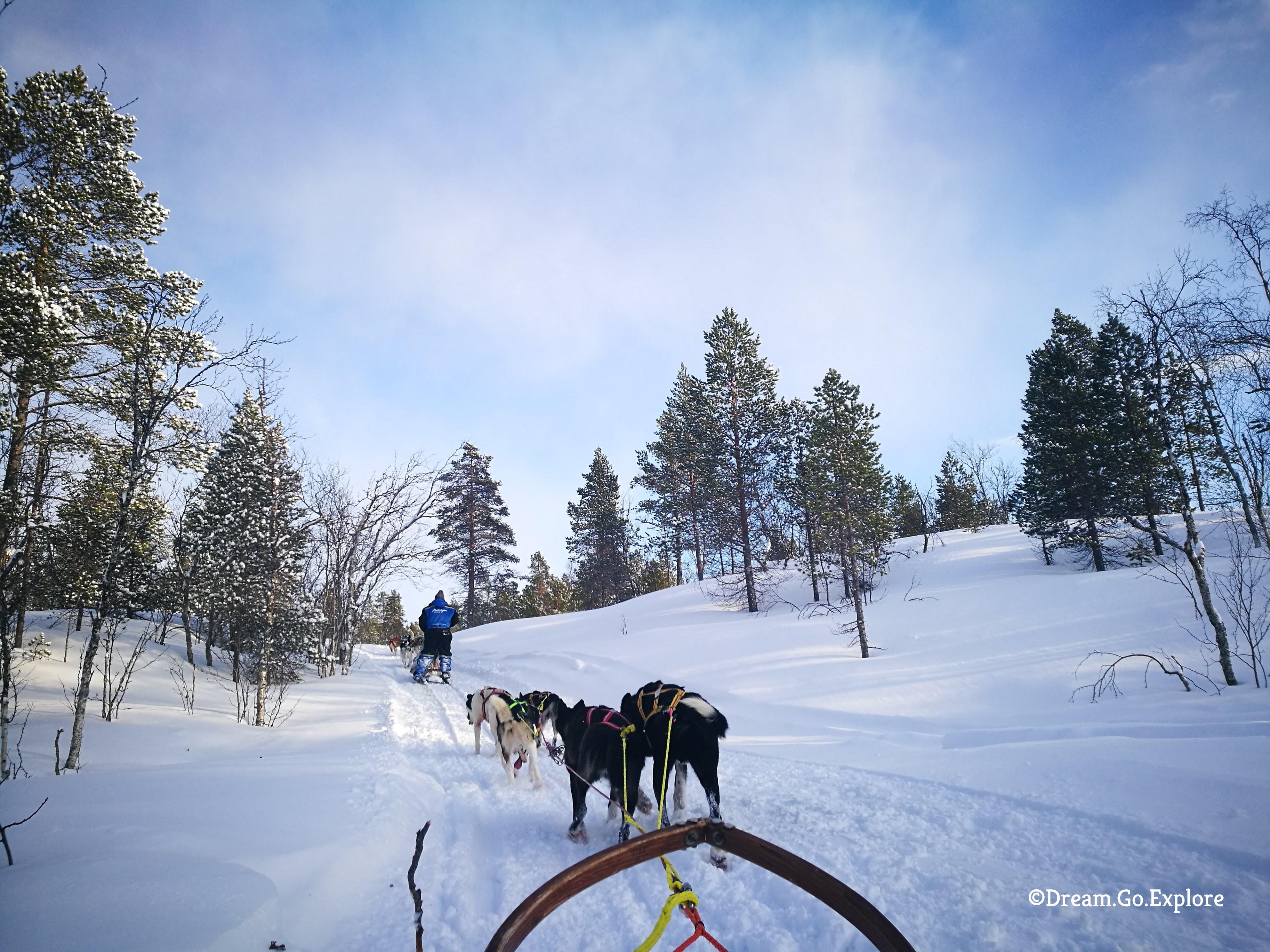 Dog sledding into the white silence (Norway)  – Hundeschlitten fahren in unberührter Natur (Norwegen)