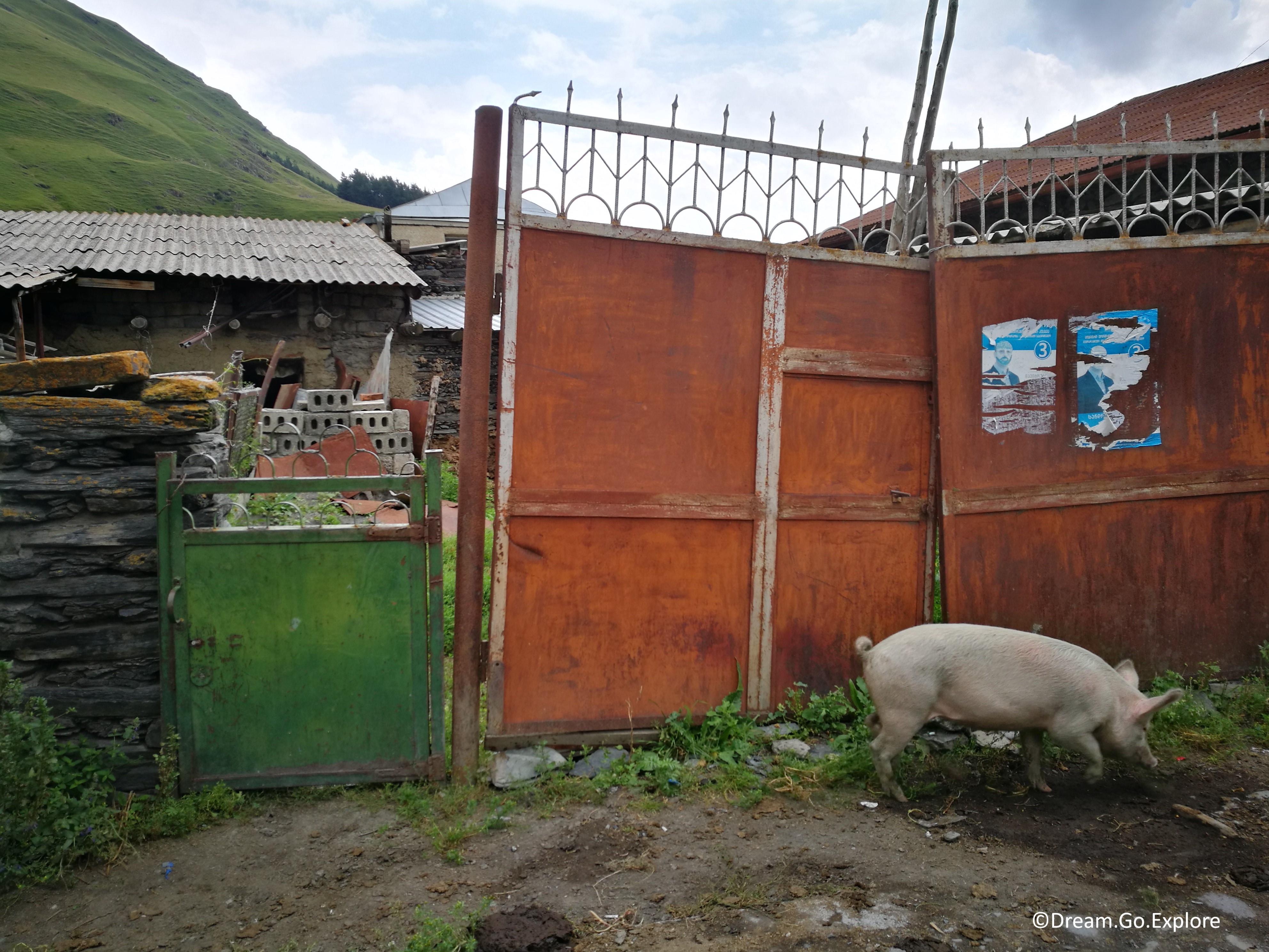Sno – a tiny village in the Caucasus mountains (Georgia)  – Sno – ein kleines Dorf im Kaukasus (Georgien)